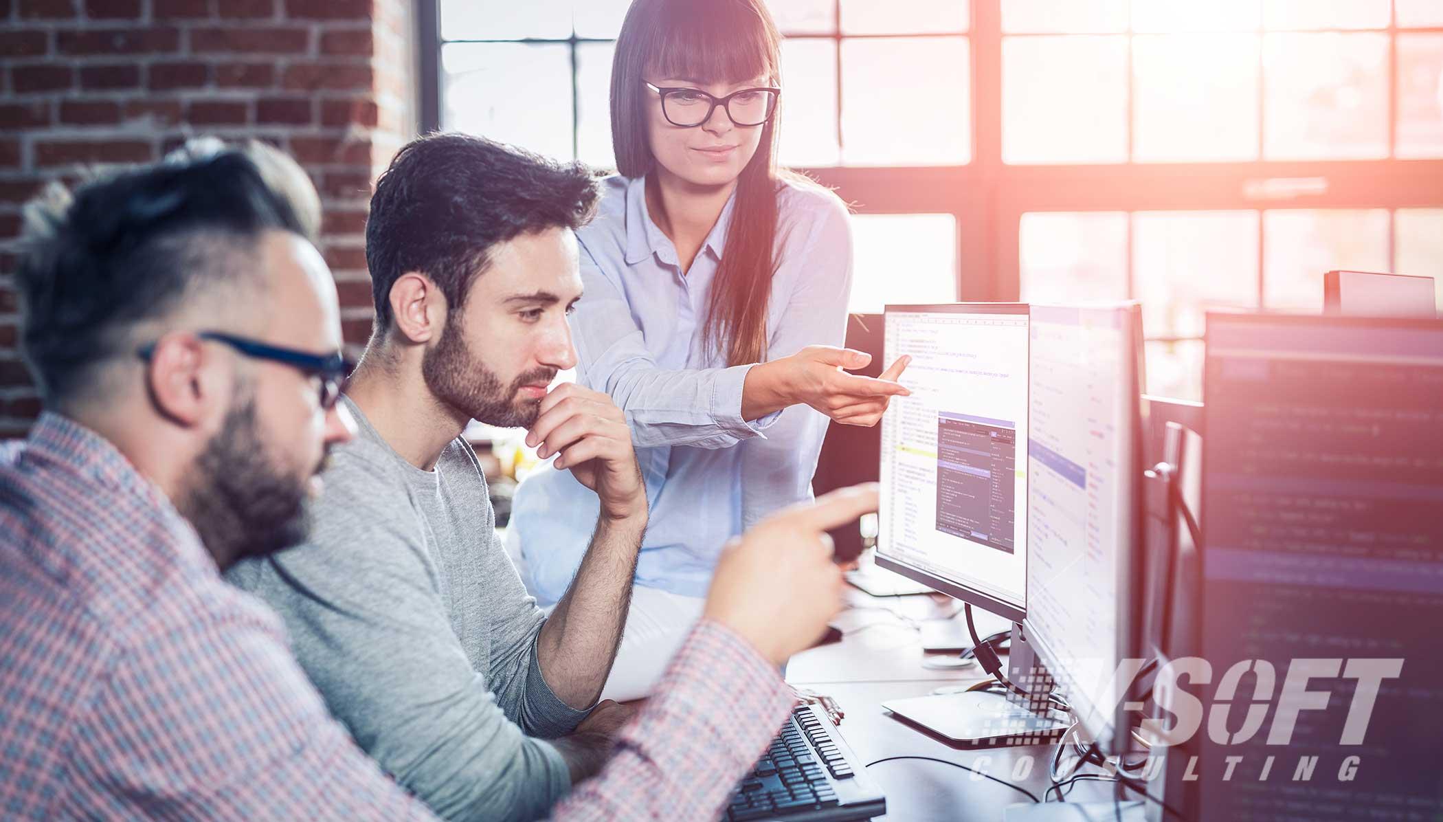 Web Application Testing Professionals